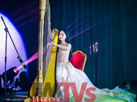 m6米乐平台演艺经纪\交响乐团\小提琴表演\手风琴表演\竖琴表演
